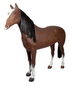 Demonstrační kůň PFIFF