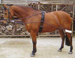 Harryho koně, který se vyčerpá