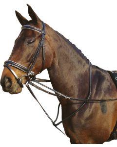 Harryho kůň Thiedeman rein