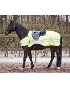 Harry kůň cvičení Rug reflexní