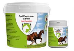 Hofman Equi Magnesium citrát 500 gr