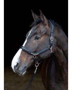 Harry's Horse Ohlávka z kůže Rosegold anatomická