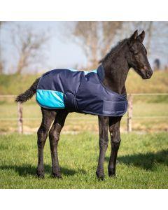 Harry's Horse Hříbě deka TwoTone