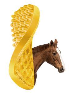Hofman Pet + Me kůň