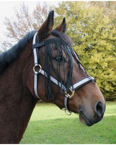 Hofman Křídový popruh na koni