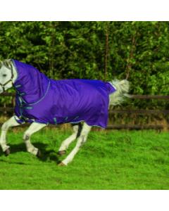 Koně Amigo Bravo 12 Plus Pony Lite 0G