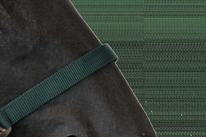 Hofman Ohlávka Klasická tmavě zelená