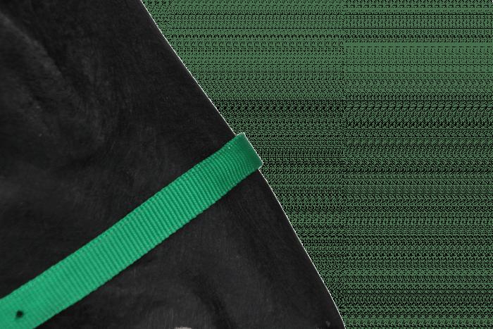 Hofman Ohlávka Klasická zelená