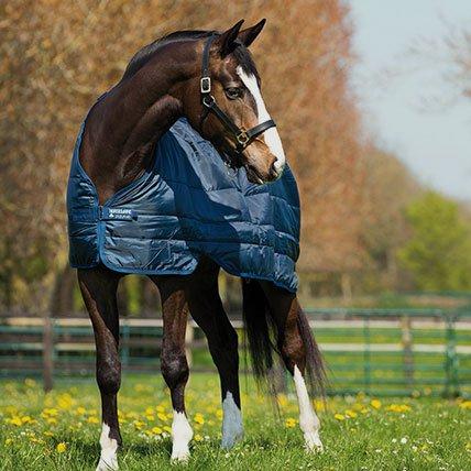 Zimní deky od 165 cm (kůň)